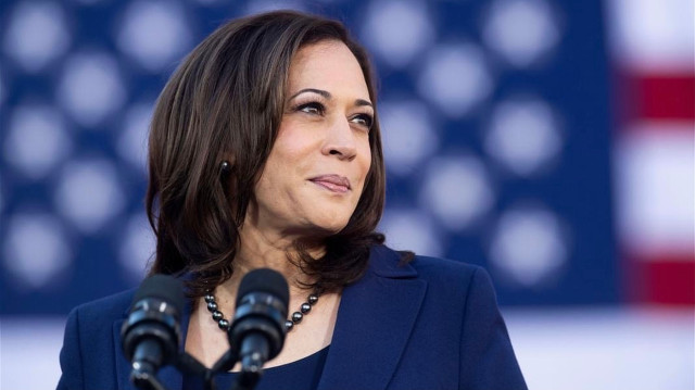 Harris Supporters Smack The Left Over Blame For Minimum Wage